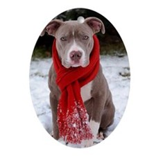 Holiday Pit Bull with Red Scarf Oval Ornament