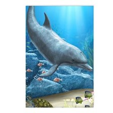 The World Of The Dolphin Postcards (Package of 8)