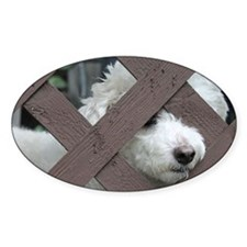 bichon Decal