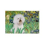 Irises and Bichon Rectangle Magnet (10 pack)
