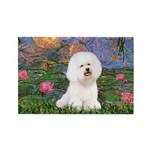Lilies 4 / Bichon 1 Rectangle Magnet