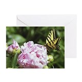 Suitable Greeting Cards (Pk of 10)