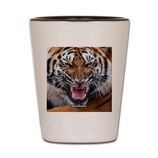 Tiger Mad Shot Glass