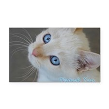 Blue Eyed Kitten Thank You Rectangle Car Magnet