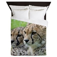 Cheetah009 Queen Duvet