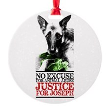 Unique Animal abuse Ornament