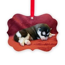 Siberian Husky Ornament From The Taja Collection