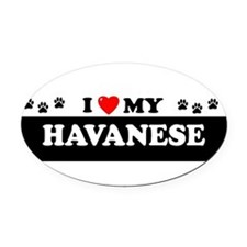 Unique Havanese Oval Car Magnet