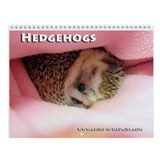 Hedgehog calendar Wall Calendars