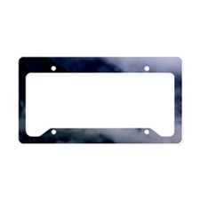 Seagull in the Clouds License Plate Holder