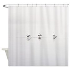 3 Gulls Shower Curtain