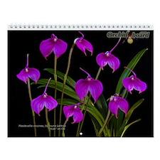 Orchid Board Wall Calendar (2013 Contest)