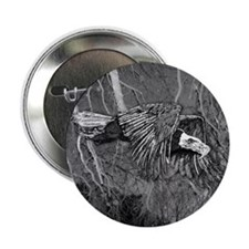 "American Bald Eagle in Flight 2.25"" Button (10 pac"