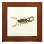 Light Scorpion Framed Tile