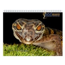 2014 Geckos Unlimited Wall Calendar