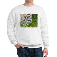 Cute Tabby cat Sweatshirt