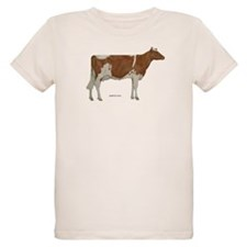 Golden Guernsey cow T-Shirt