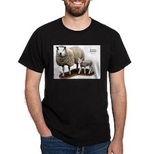 Texel Sheep and Lamb T-Shirt