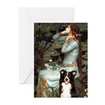 Ophelia & Border Collie Greeting Cards (Pk of 10)