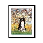 Spring & Border Collie Framed Panel Print