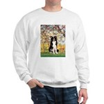 Spring & Border Collie Sweatshirt