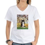 Spring & Border Collie Women's V-Neck T-Shirt