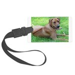 Ridgeback Large Luggage Tag