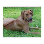Ridgeback Throw Blanket
