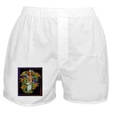 dragon and mermaid Boxer Shorts