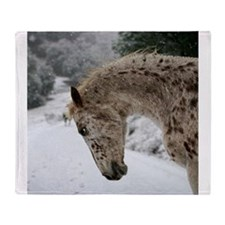 appaloosa in the snow Throw Blanket