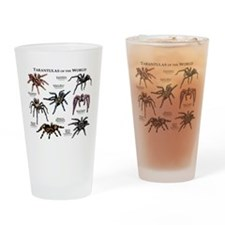 Tarantulas of the World Drinking Glass
