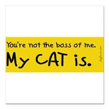 "Cats Square Car Magnet 3"" x 3"""