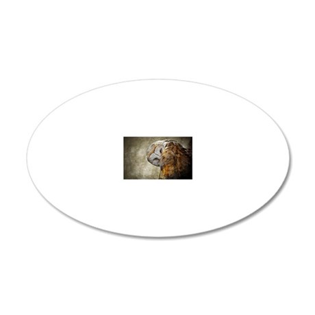 Barn Owl 20x12 Oval Wall Decal