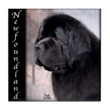 Newfoundlands Tile Coaster