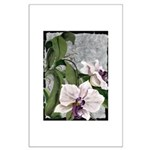 Large Poster of orchid watercolor by Mitzi Lai