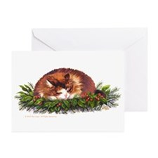 Christmas Nap Cards (Pk Of 10)