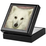Cute American eskimo dog Keepsake Box