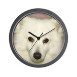 Cute American paint Wall Clock
