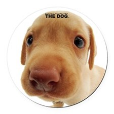 Labrador Retriever Round Car Magnet