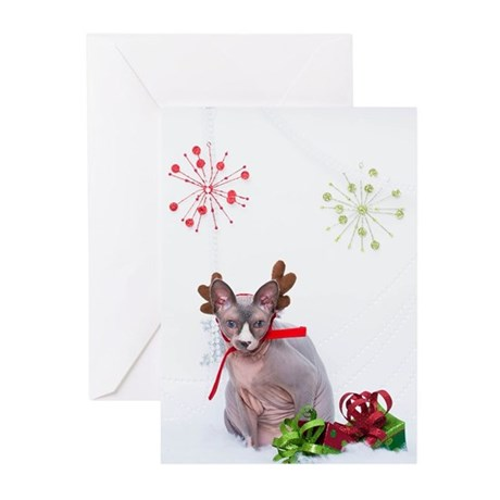 Happy Holidays 107 Greeting Cards