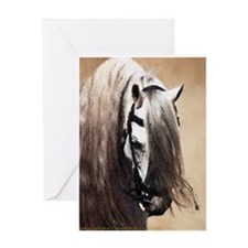 Andalusian Horse Portrait Greeting Cards