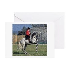 Andalusian Gymnastics Greeting Cards