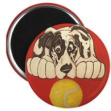 NH Tennisball Magnet