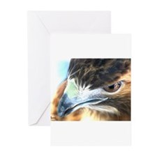 Red Tail Hawk Side Portrait ( Greeting Cards (Pack