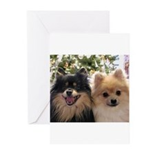 Pomeranians Greeting Cards
