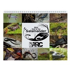 2014 Year Of The Salamander Calendar