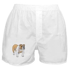 English Bulldog Boxer Shorts