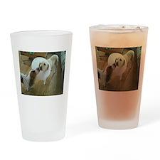 Sick Dog Drinking Glass