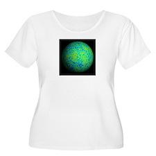 CMB Fluctuations II T-Shirt