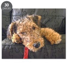 Sleepy Airedale Earnest Puzzle